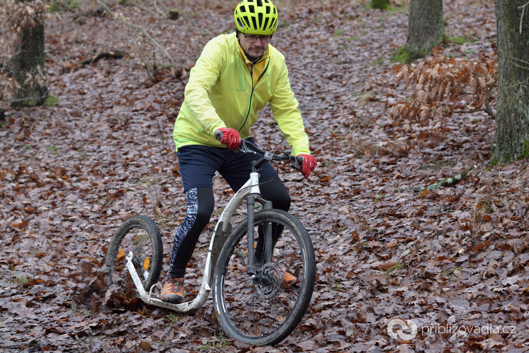 Kickbike Cross Fix 27,5